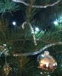 Hanging on Amber's Tree