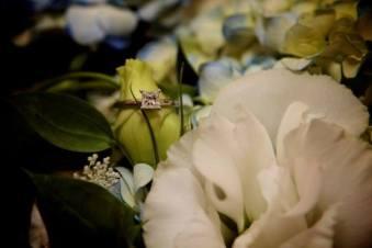 Davis-Bennett Wedding