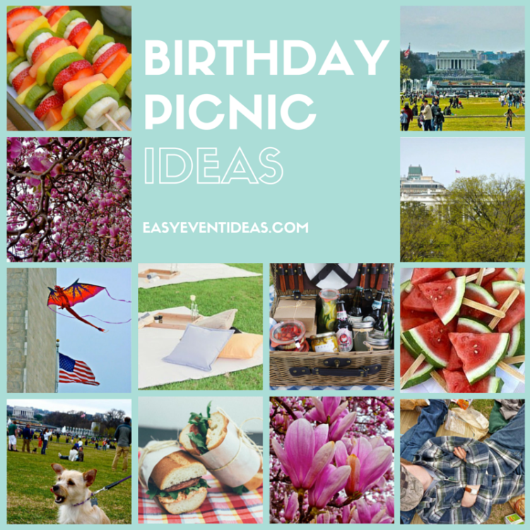 Perfect Birthday Picnic Ideas
